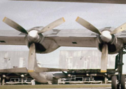 e1-494x352